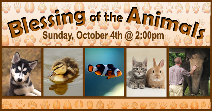 Animal Blessing 2015 POST
