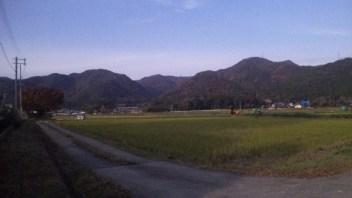 印地の田んぼと秋の山