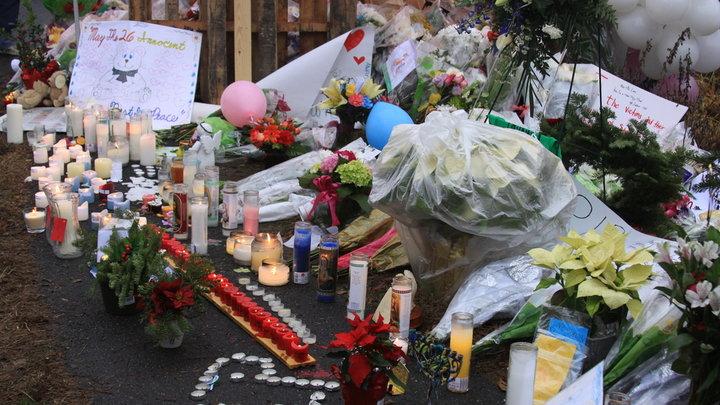 サンディフック小学校銃乱射事件 : 報告書ではゲームと動機との関連は無し