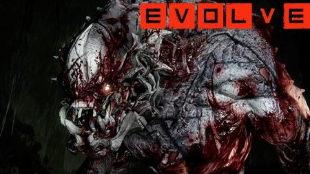 Evolve エボルブ