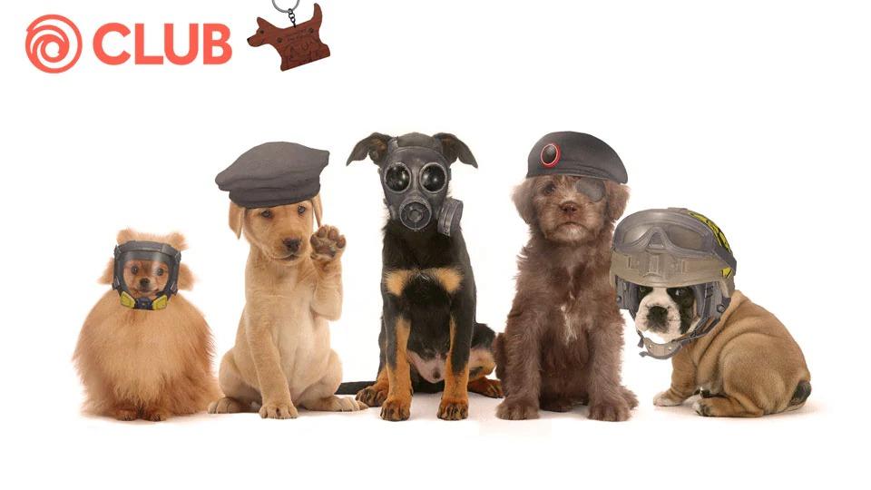 『レインボーシックスシージ』「犬の日チャレンジ」