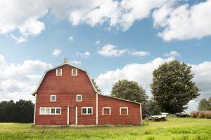 Summers on the Farm — Marion Tratnyek