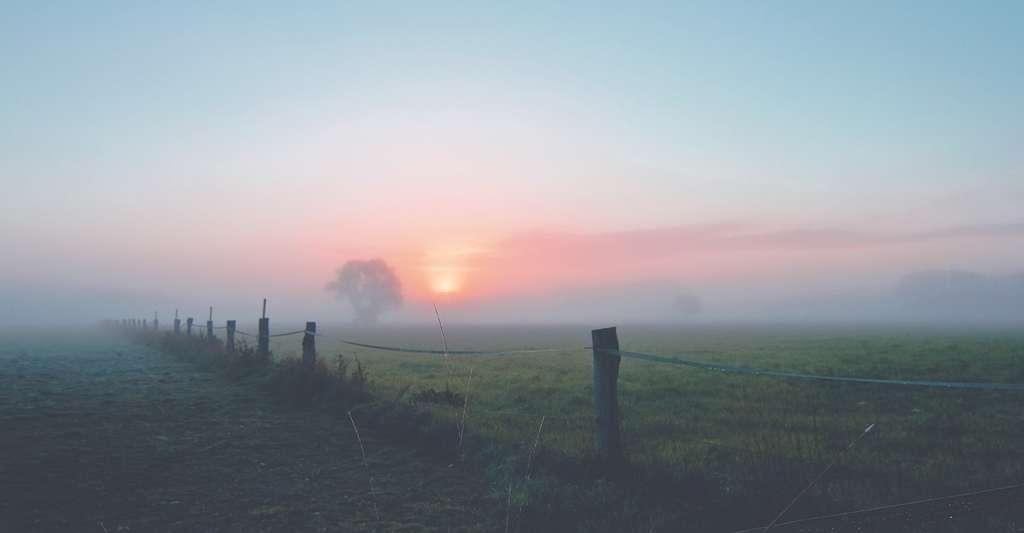 Si les journées d'été indien sont ensoleillées, les matinées restent brumeuses. © Splashi, Pixabay, CC0 Creative Commons