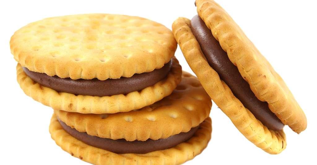 Les biscuits sont énergétiques et apportent sucres et graisses. © Emilio100, Shutterstock