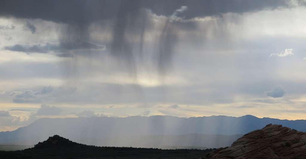 En juin 2013, il est tombé entre 110 et 180 millimètres de pluie sur le relief des Pyrénées en seulement 48 heures. © Crispin Semmens, CC by SA-2.0