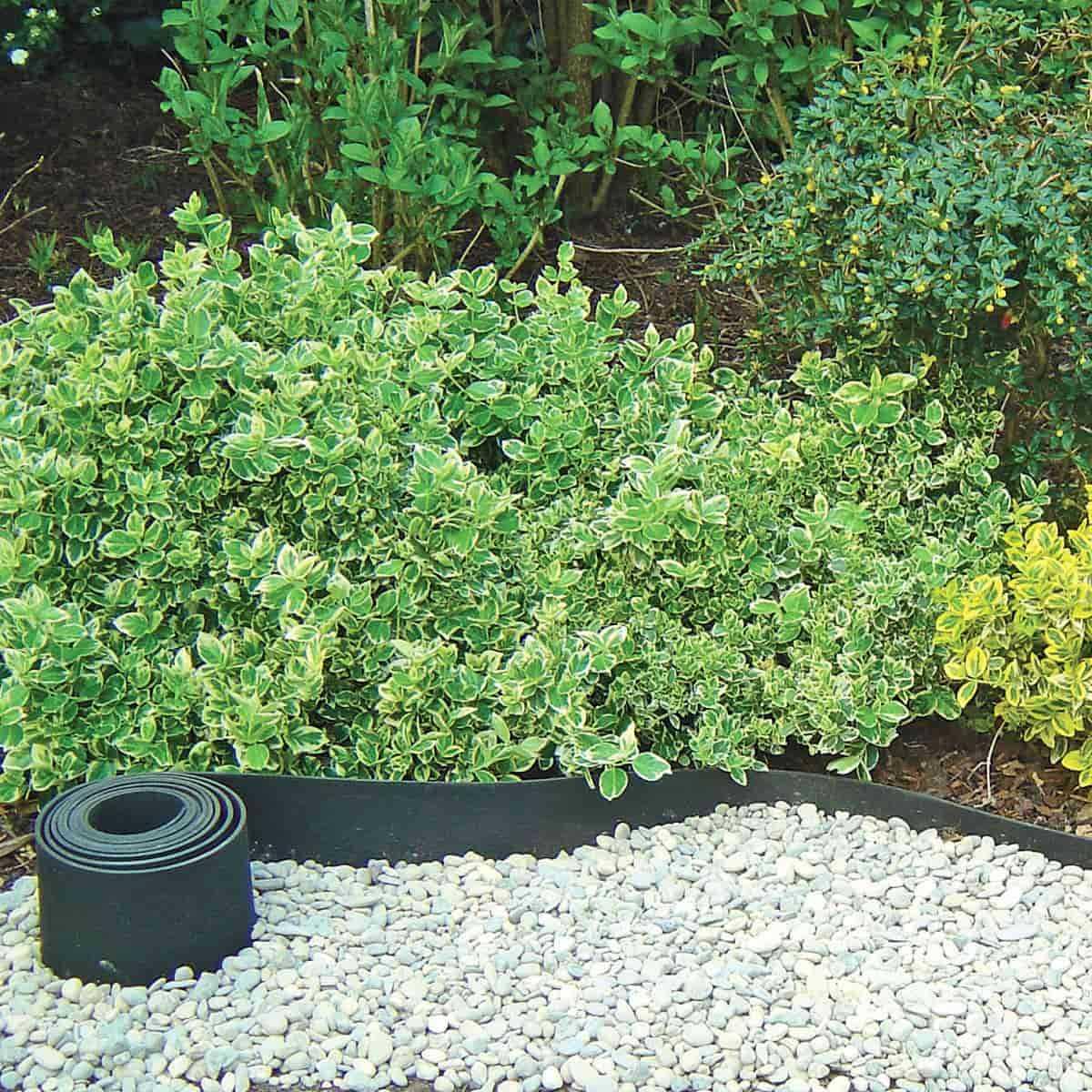 bordure caoutchouc recycle gazon 5mx13cm vente au meilleur prix jardins animes