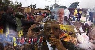 Photo des manifestants congolais en train de bruler le drapeau d'un parti politique.