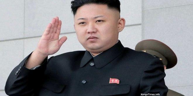 Trafic de cornes de rhinocéros : La Corée du Nord se défend