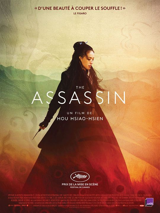 The Assassin : Affiche