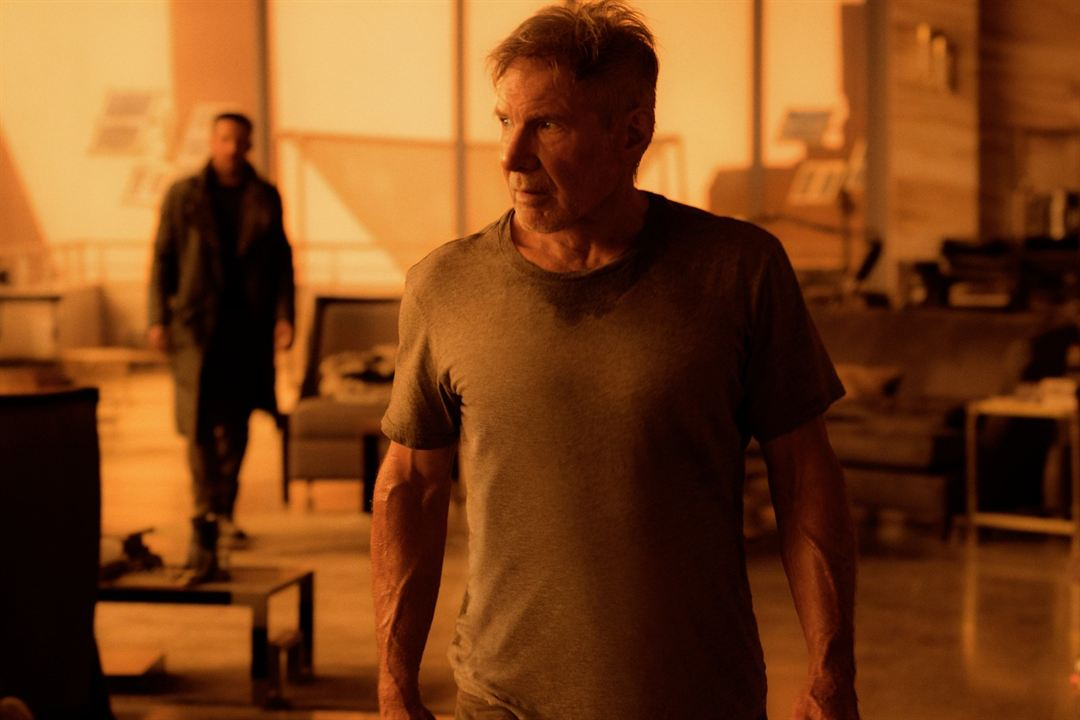 Blade Runner 2049 : Photo Harrison Ford