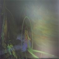 "Phoenix, (c) 2014 Lianne Todd 24x24"" original metal print (single edition) $425.00"