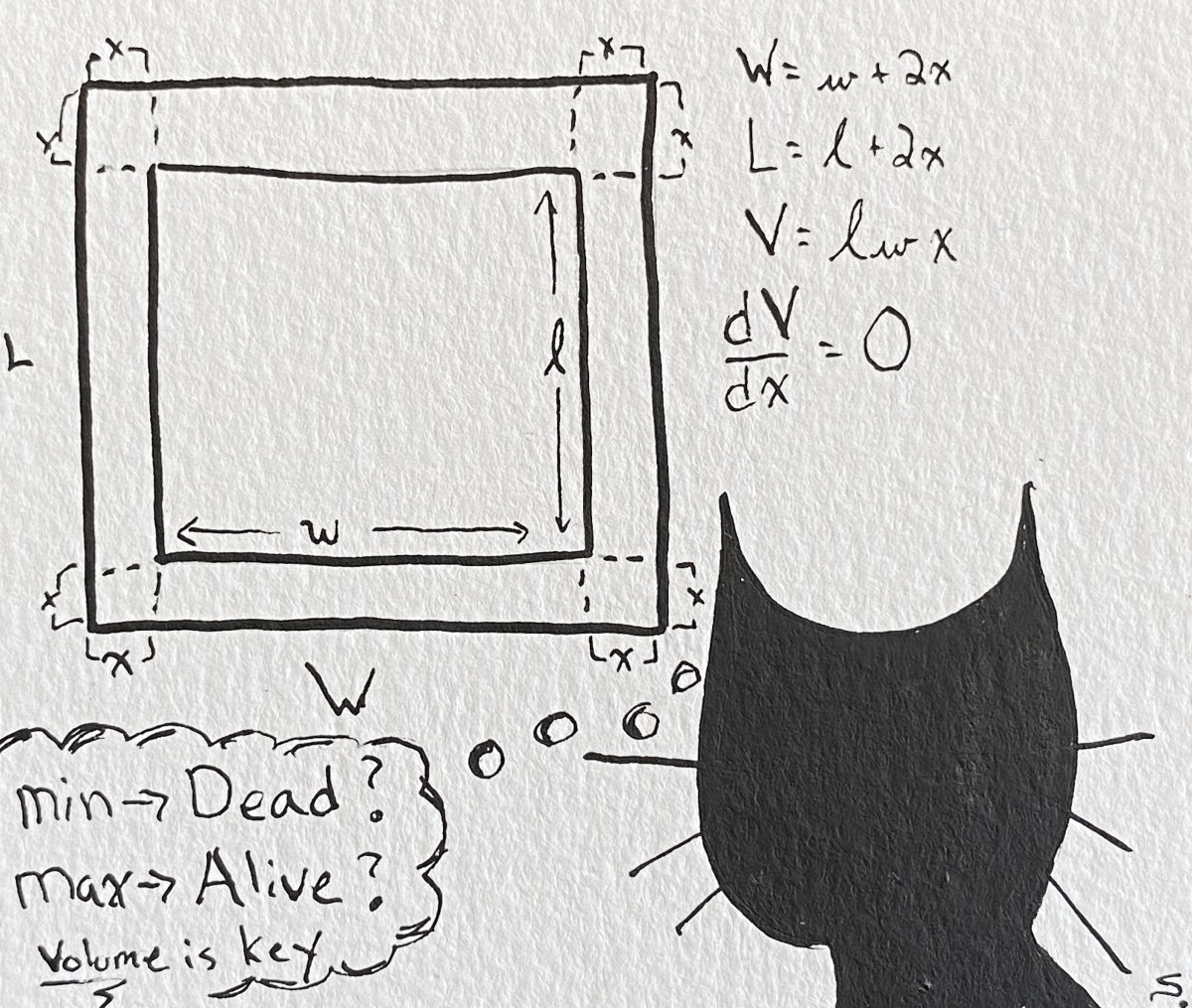 "10/20/20: Maximum - Contemplating if ""Dead or Alive?"" is a Volume Problem..."