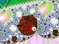 Figura 14: un fractal cerca del borde del conjunto de Mandelbrot.