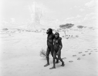 Black-and-white photograph of a museum diorama of two early humans crossing a savannah