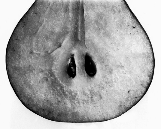 Black-and-white photograph of the lower half of a pear cut open