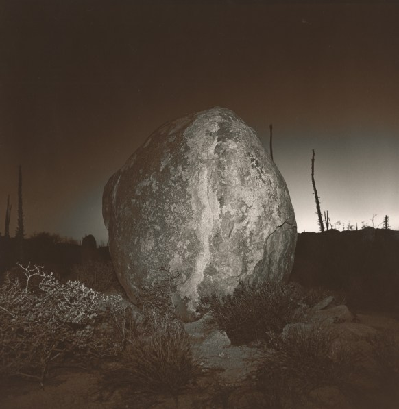 Black-and-white square photograph of a rounded boulder at night in front of silhouetted desert plants with a glow on the horizon