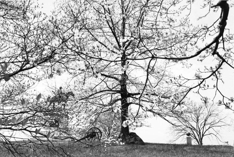 Gettysburg National Military Park,  Pennsylvania, 1974, gelatin-silver print