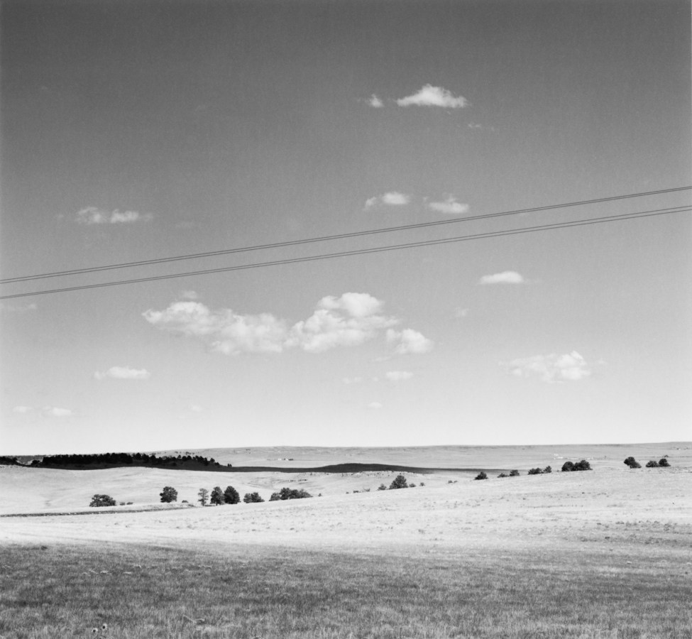 A black and white photograph of trees in an open field, with telephone lines running diagonally through the sky.