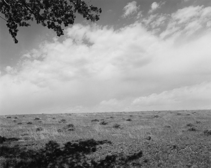 A black and white photograph of an open field with a tree branch in the top of the image and tree shadow in bottom image and a cloudy sky.