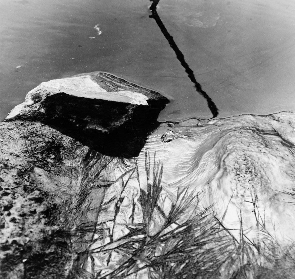 Black-and-white photograph of a partly-submerged rock in moving water reflecting pine branches above