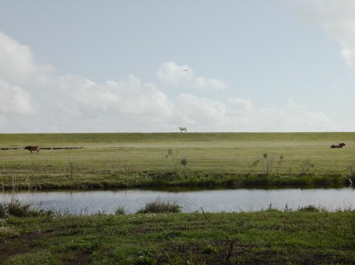 49_HelicopterReturning