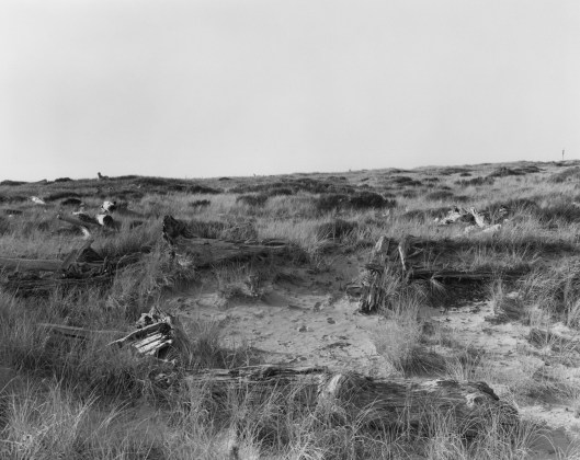 Robert Adams, Nehalem Spit, Oregon, 2013