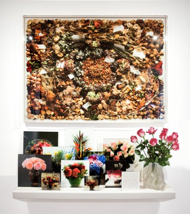 A framed photograph of dried flowers, over a shelf full of photographs of flowers, and a vase of real roses