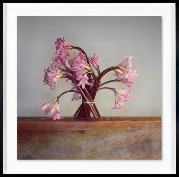Flowers, 2018, unique Ilfochrome photograph
