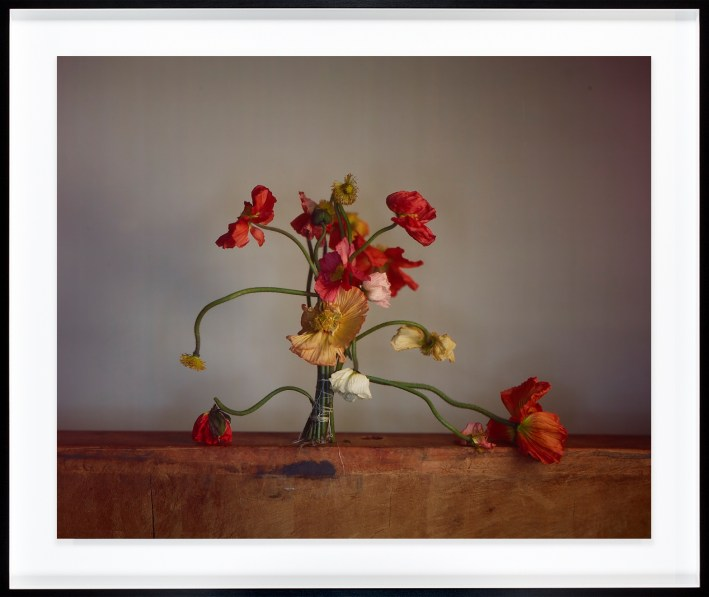 Color photograph of standing red and yellow flowers tied together at the stem with string