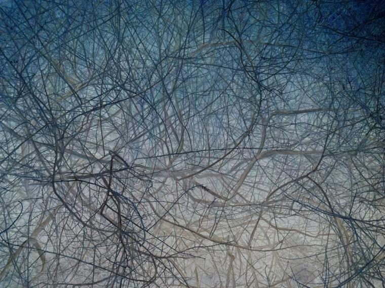 IPS #9876 (Scrub #4), 2011, pigment print