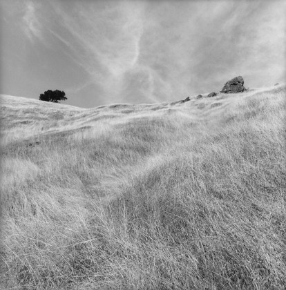 Lee Friedlander, Stinson Beach, California, 2003