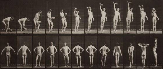 Eadweard Muybridge, A: Lifting a 50-lb. dumbell. B: Posing. , 1887, collotype
