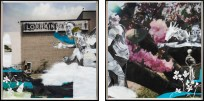 A diptych of two framed collages, one of the Lorraine Motel and one of a flowering magnolia tree, with protesting figures in front.