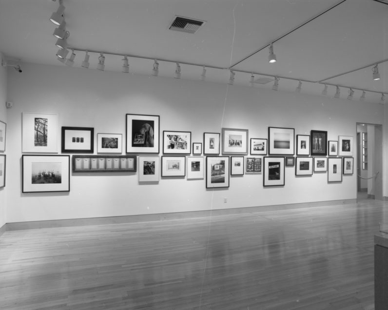 Installation view of Several Exceptionally Good Recently Acquired Pictures VIII (1994)