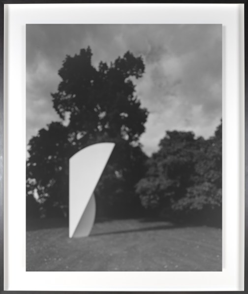 Black-and-white photograph of out of focus geometric sculpture in a meadow against trees