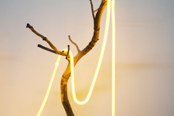 A detail of a sculpture, of neon draped over a branch