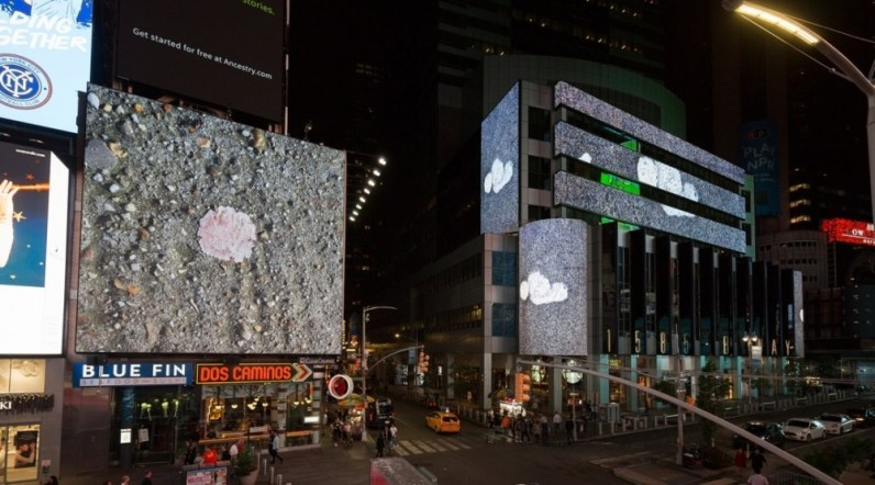 A photograph of Times Square at night, each screen showing a photograph of bubble gum in the street