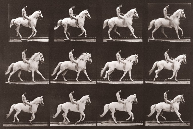 Sepia toned photograph with a grid of 12 panels showing a nude man riding a horse.
