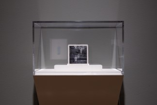 Installation photograph of photorealistic paintings installed in a gallery