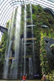 Cloud-Forest-10