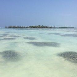 Malediwy 15