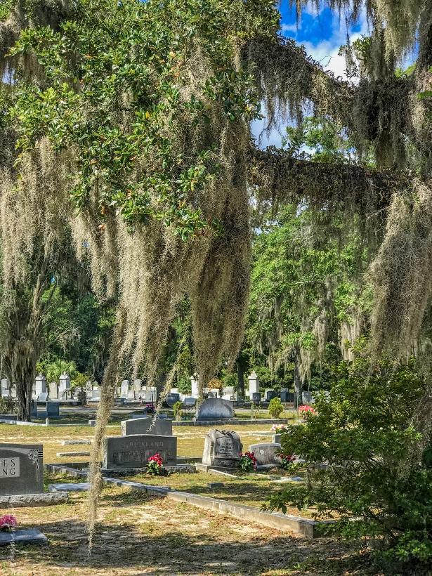 cmantarz Bonaventure w Savannah 006