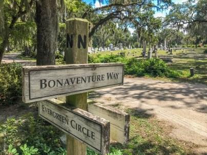 cmantarz Bonaventure w Savannah 011