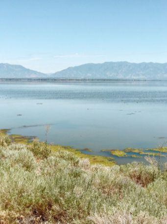 Stany Zjednoczone Wielkie Jezioro Słone atrakcje w okolicy Salt Lake City stan Utah 06