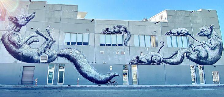 street art atrakcje zwiedzanie co warto zobaczyć w Miami dzielnica graffiti Wynwood 001