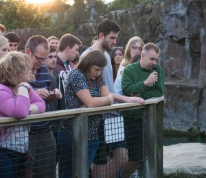 2015-08-01 Bristol Zoo at night 024