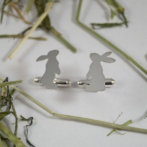dino earrings 2015-07-31 138