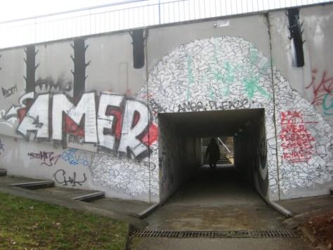 besancon_10.03.13_Amer_graffiti (1)