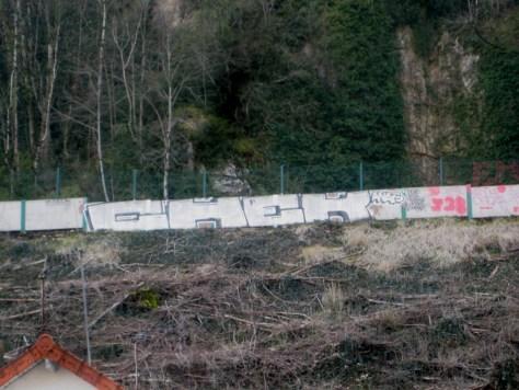 mars 2013 - besancon graffiti- chek