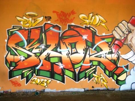 mai 2013_graffiti_besancon_rip_Tew (11)